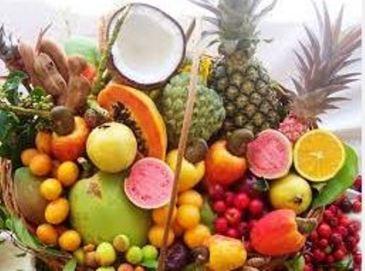 Sistemas alimentares sustentáveis